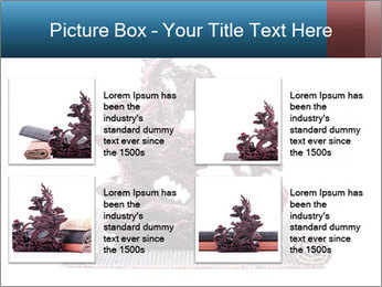 0000063232 PowerPoint Template - Slide 14