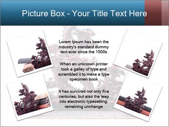 0000063232 PowerPoint Template - Slide 24