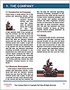 0000063232 Word Templates - Page 3