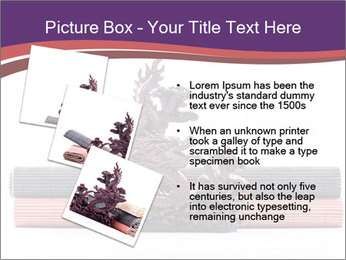 0000063233 PowerPoint Template - Slide 17