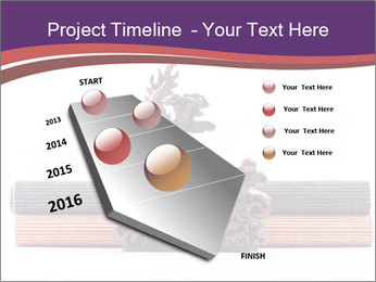 0000063233 PowerPoint Template - Slide 26