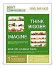 0000063236 Flyer Templates