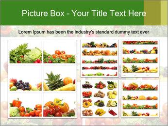 0000063236 PowerPoint Templates - Slide 19