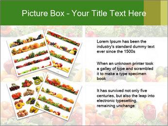 0000063236 PowerPoint Templates - Slide 23