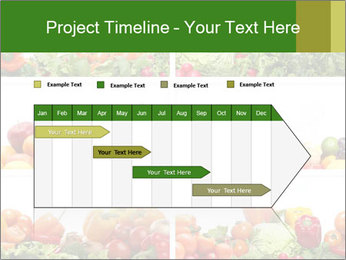 0000063236 PowerPoint Templates - Slide 25