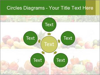0000063236 PowerPoint Templates - Slide 78