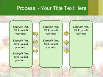 0000063236 PowerPoint Templates - Slide 86