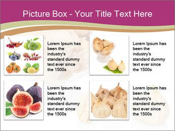 0000063237 PowerPoint Template - Slide 14