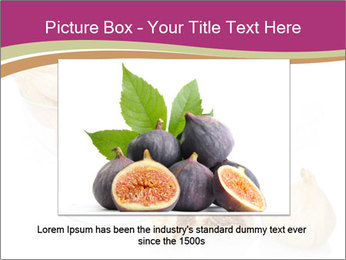 0000063237 PowerPoint Template - Slide 16