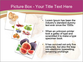 0000063237 PowerPoint Template - Slide 17