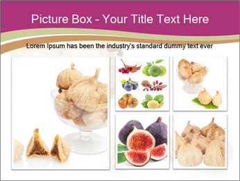 0000063237 PowerPoint Template - Slide 19