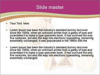0000063237 PowerPoint Template - Slide 2