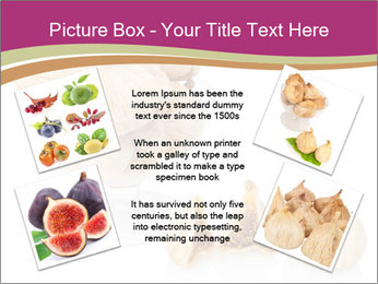 0000063237 PowerPoint Template - Slide 24