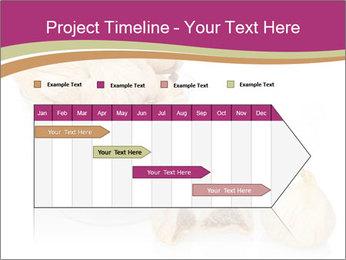 0000063237 PowerPoint Template - Slide 25