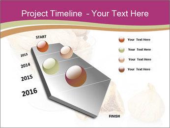 0000063237 PowerPoint Template - Slide 26