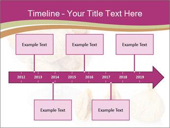 0000063237 PowerPoint Template - Slide 28