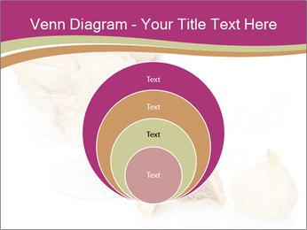 0000063237 PowerPoint Template - Slide 34