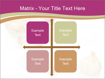 0000063237 PowerPoint Template - Slide 37