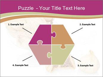 0000063237 PowerPoint Template - Slide 40