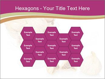 0000063237 PowerPoint Template - Slide 44
