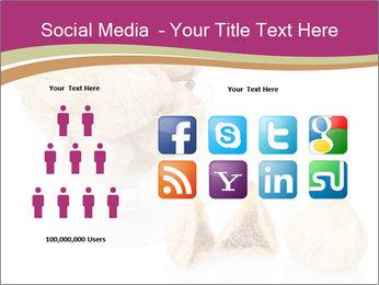 0000063237 PowerPoint Template - Slide 5