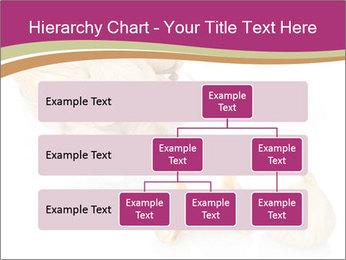 0000063237 PowerPoint Template - Slide 67