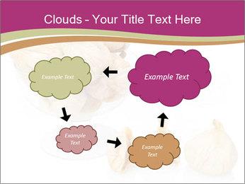 0000063237 PowerPoint Template - Slide 72