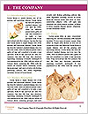 0000063237 Word Templates - Page 3