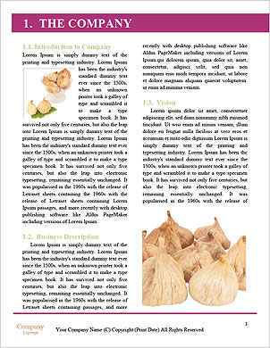 0000063237 Word Template - Page 3