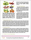 0000063237 Word Templates - Page 4