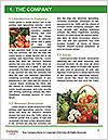 0000063239 Word Template - Page 3
