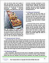 0000063241 Word Templates - Page 4