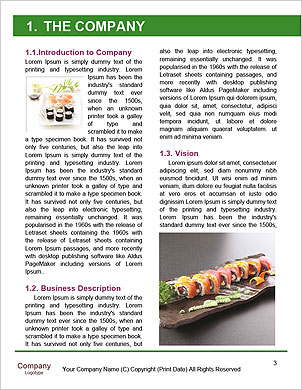 0000063256 Word Template - Page 3