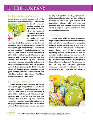 0000063262 Word Template - Page 3