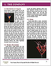 0000063263 Word Templates - Page 3