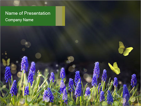 Spring Meadow Full ofFlowers PowerPoint Template