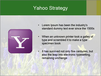 Spring Meadow Full ofFlowers PowerPoint Template - Slide 11
