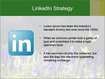 Spring Meadow Full ofFlowers PowerPoint Template - Slide 12