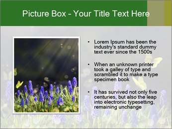Spring Meadow Full ofFlowers PowerPoint Template - Slide 13