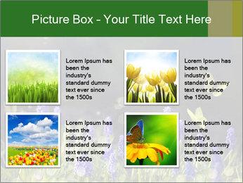 Spring Meadow Full ofFlowers PowerPoint Template - Slide 14