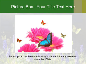 Spring Meadow Full ofFlowers PowerPoint Templates - Slide 15