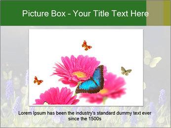 Spring Meadow Full ofFlowers PowerPoint Template - Slide 15