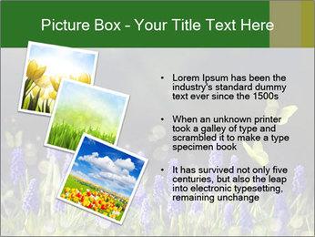 Spring Meadow Full ofFlowers PowerPoint Template - Slide 17