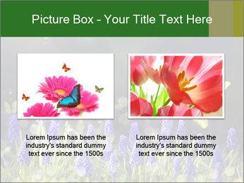 Spring Meadow Full ofFlowers PowerPoint Template - Slide 18