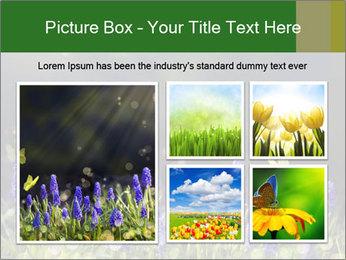 Spring Meadow Full ofFlowers PowerPoint Template - Slide 19