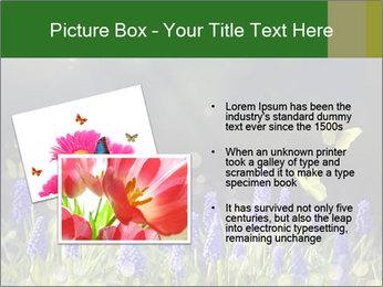 Spring Meadow Full ofFlowers PowerPoint Template - Slide 20