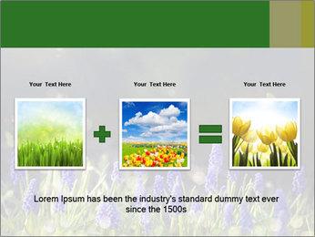 Spring Meadow Full ofFlowers PowerPoint Template - Slide 22