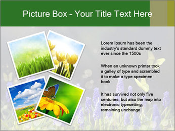 Spring Meadow Full ofFlowers PowerPoint Template - Slide 23