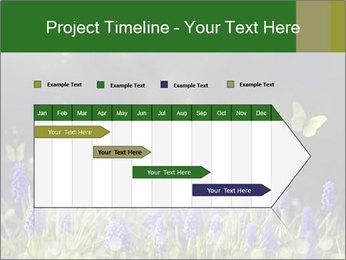 Spring Meadow Full ofFlowers PowerPoint Template - Slide 25