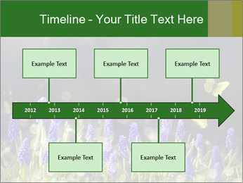 Spring Meadow Full ofFlowers PowerPoint Template - Slide 28
